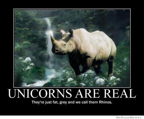 unicorns-are-real
